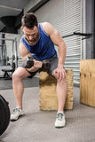Muscular man lifting dumbbell on wooden block Stock Image
