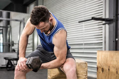 Muscular man lifting dumbbell on wooden block Royalty Free Stock Photography