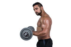 Muscular man lifting heavy barbell Stock Image
