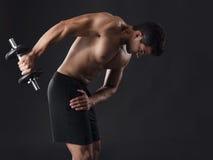 Muscular man lifting weights Stock Image