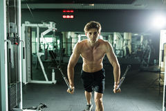 Muscular man lifting weights in fitness gym center. Muscular man lifting weights. Sport health concept stock images