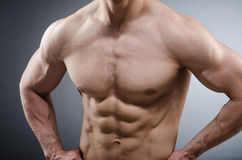 Muscular man posing in dark studio Stock Image
