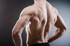 Muscular man posing in dark studio Royalty Free Stock Photos
