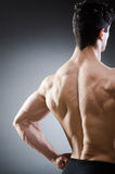 Muscular man posing in dark studio Royalty Free Stock Photo