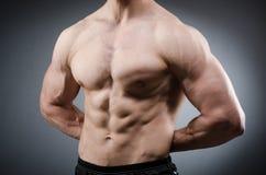 The muscular man posing in dark studio Royalty Free Stock Image