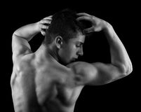 Muscular man posing in studio Royalty Free Stock Photography