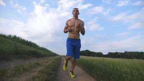 Muscular man running at country road. Young athletic guy jogging at rural trail over the field. Male sportsman training stock video footage