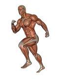 Muscular man running - 3D render Stock Photo