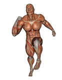 Muscular man running - 3D render Royalty Free Stock Photo