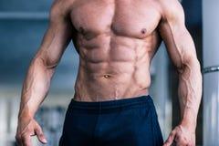 Muscular man's torso Royalty Free Stock Photos