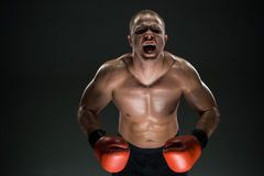 Muscular man screaming and roar Stock Photography