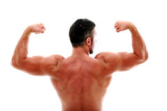 Muscular man showing his biceps Stock Photography