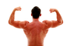 Muscular man showing his biceps Stock Image