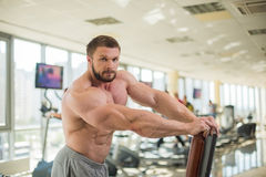 Muscular man. Royalty Free Stock Photo