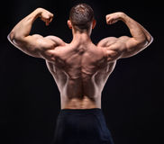 Muscular man in studio show his back Stock Image