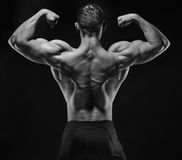 Muscular man in studio show his back royalty free stock photos