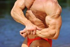 Muscular man torso - closeup Royalty Free Stock Photos
