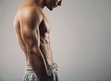 Muscular man torso on grey background with copy space. Cropped image of muscular young man torso on grey background with copy space Royalty Free Stock Photo