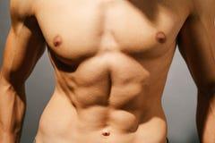 Muscular man torso Royalty Free Stock Image