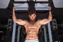 Muscular man  training in the gym Royalty Free Stock Photos