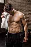 Muscular man wiping his face with towel Stock Photography