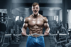 Muscular man working out in gym doing exercises with barbell at biceps, strong male naked torso abs. Muscular man working out in gym doing exercises with barbell Royalty Free Stock Photos
