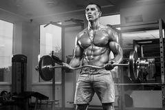 Muscular man working out in gym doing exercises with barbell, strong male abs.  royalty free stock photography