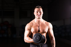 Muscular man working out in gym doing exercises with dumbbells at biceps, strong male naked torso abs. Muscular man working out in gym doing exercises with Stock Image