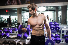 Muscular man working out in gym doing exercises with dumbbells, bodybuilder male naked torso abs. Fitness stock photo