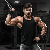 Muscular man working out in gym doing exercises, strong male bodybuilder Royalty Free Stock Photo