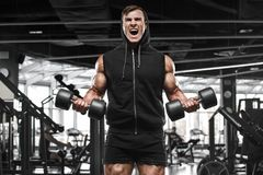 Muscular man working out in gym doing exercises, strong male bodybuilder Royalty Free Stock Photography