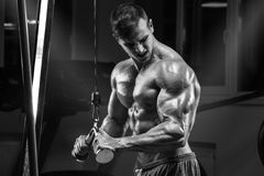 Muscular man working out in gym doing exercises, strong male torso abs.  Stock Images