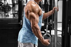 Muscular man working out in gym doing exercises at triceps, strong male stock photography