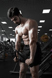 Muscular man working out in gym doing exercises at triceps Royalty Free Stock Image