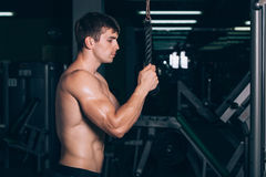Muscular man working out in gym doing exercises at triceps, strong male naked torso abs.  Stock Images