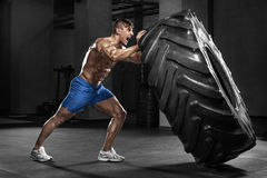 Muscular man working out in gym flipping tire, strong male naked torso abs Royalty Free Stock Image