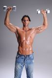 Muscular  Man Workout Royalty Free Stock Photo