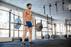 Muscular man workout with barbell Royalty Free Stock Image