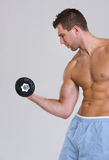 Muscular man workout biceps with dumbbell Stock Photo