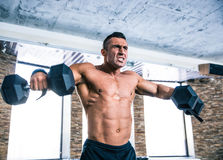 Muscular man workout with dumbbells Royalty Free Stock Image