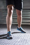 Muscular masculine legs Stock Image