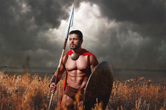 Muscular medieval warrior standing in the field royalty free stock photography