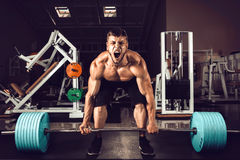 Muscular Men Lifting Deadlift. In The Gym Stock Images