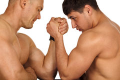 Muscular men measuring forces. Couple of muscular men measuring forces, isolated on white Royalty Free Stock Photography