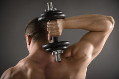Muscular Men Working Out Royalty Free Stock Images