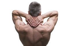 Muscular middle-aged man posing on white background, isolated studio shot, back view Royalty Free Stock Photography