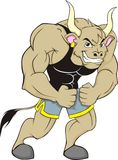 Muscular Ox. A muscular ox, ideal for sports mascot logo royalty free illustration