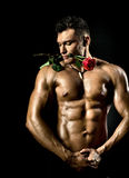 Muscular sexy guy Royalty Free Stock Photos