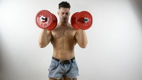 Muscular shirtless young man exercising with dumbbells stock video