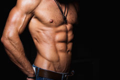 Muscular and sexy torso of young man Stock Image